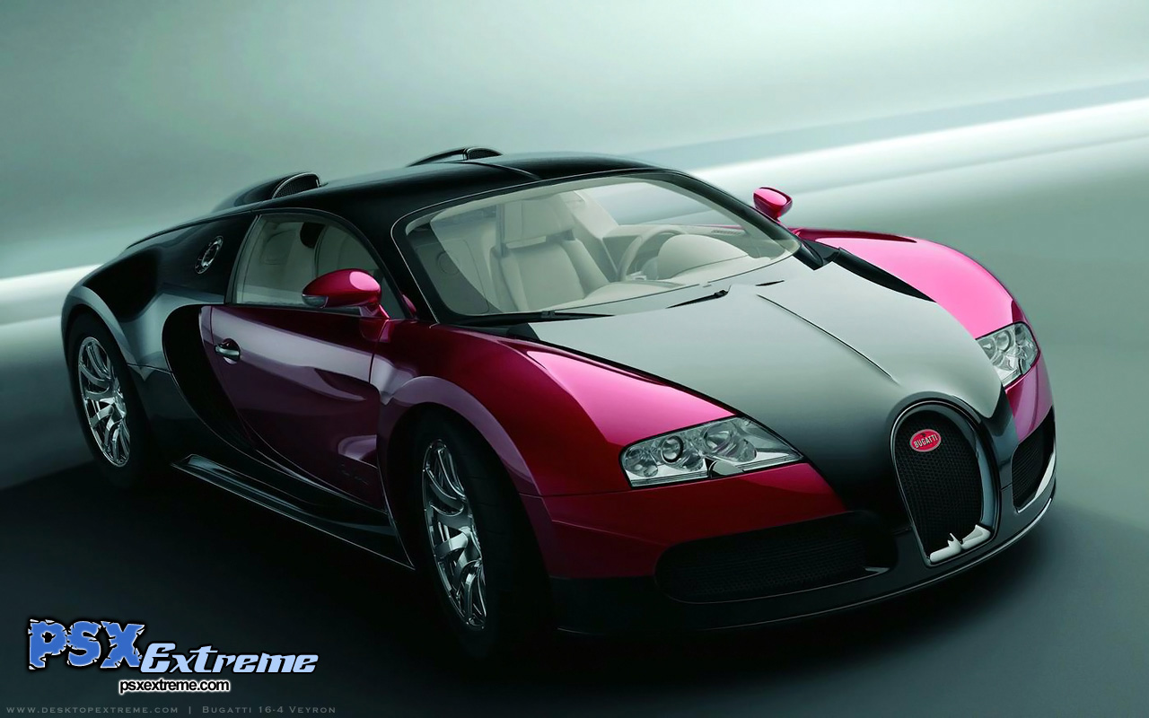 Bugatti Veyron Wallpaper Widescreen 5654 Hd Wallpapers in Cars 1280x800