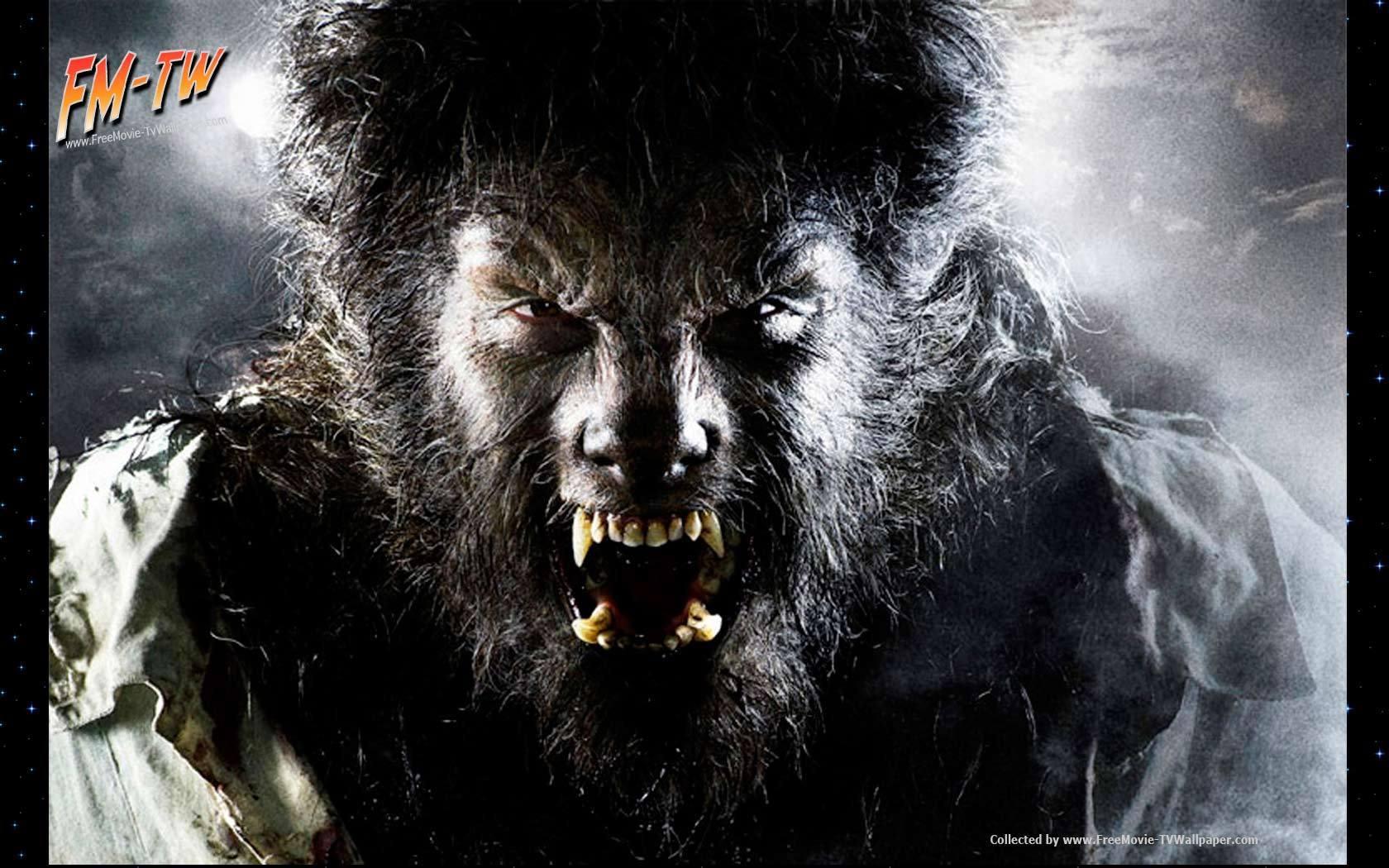 Werewolf Movies The Wolfman Movie Poster 1680x1050