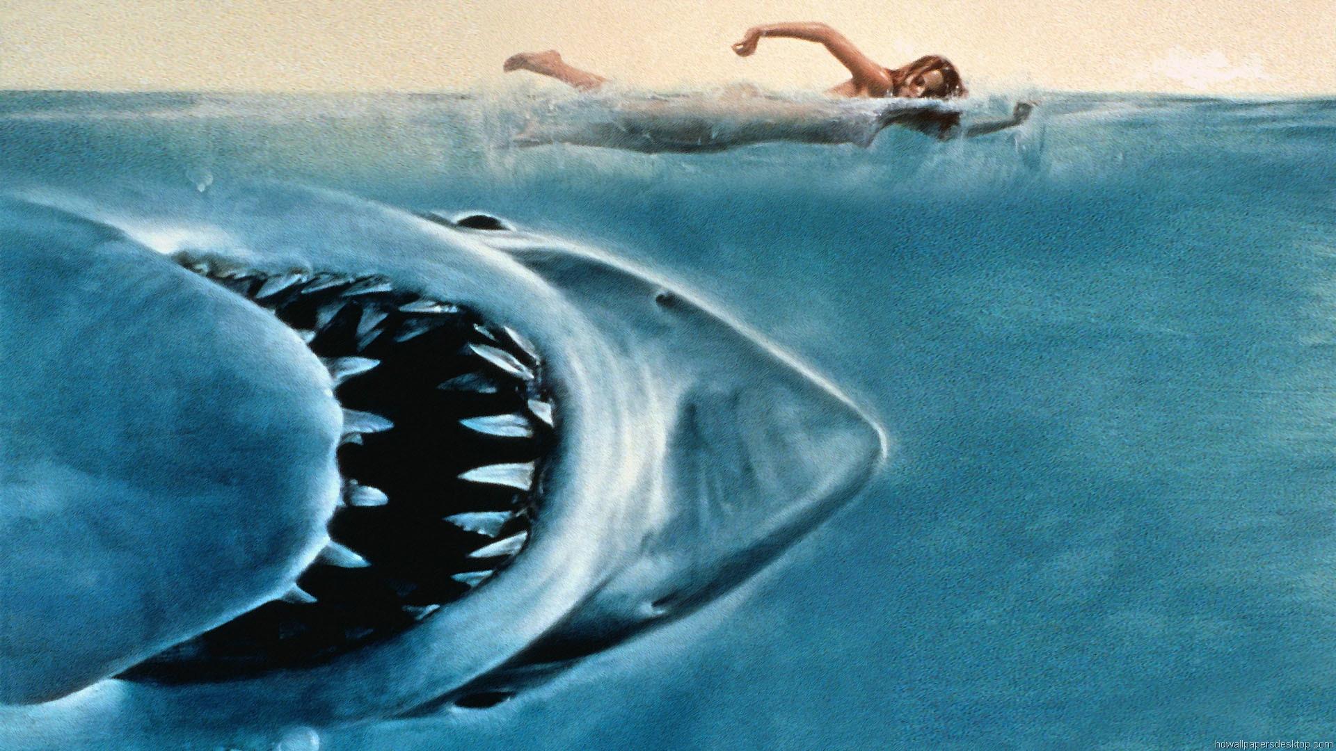 Jaws Wallpaper HD Movie Wallpaper Full HD 1080p 1920x1080 1920x1080