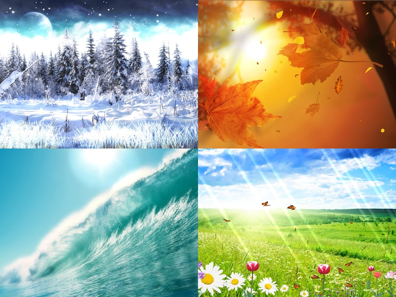 Download Four Seasons Animated Wallpaper DesktopAnimatedcom 800x600
