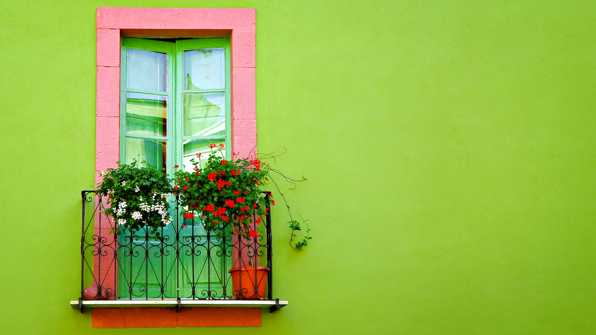 Green Wall Window Wallpapers HD Wallpapers 1920x1080