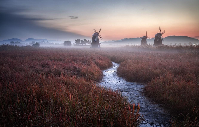 Wallpaper grass twilight Holland sky field landscape nature 1332x850