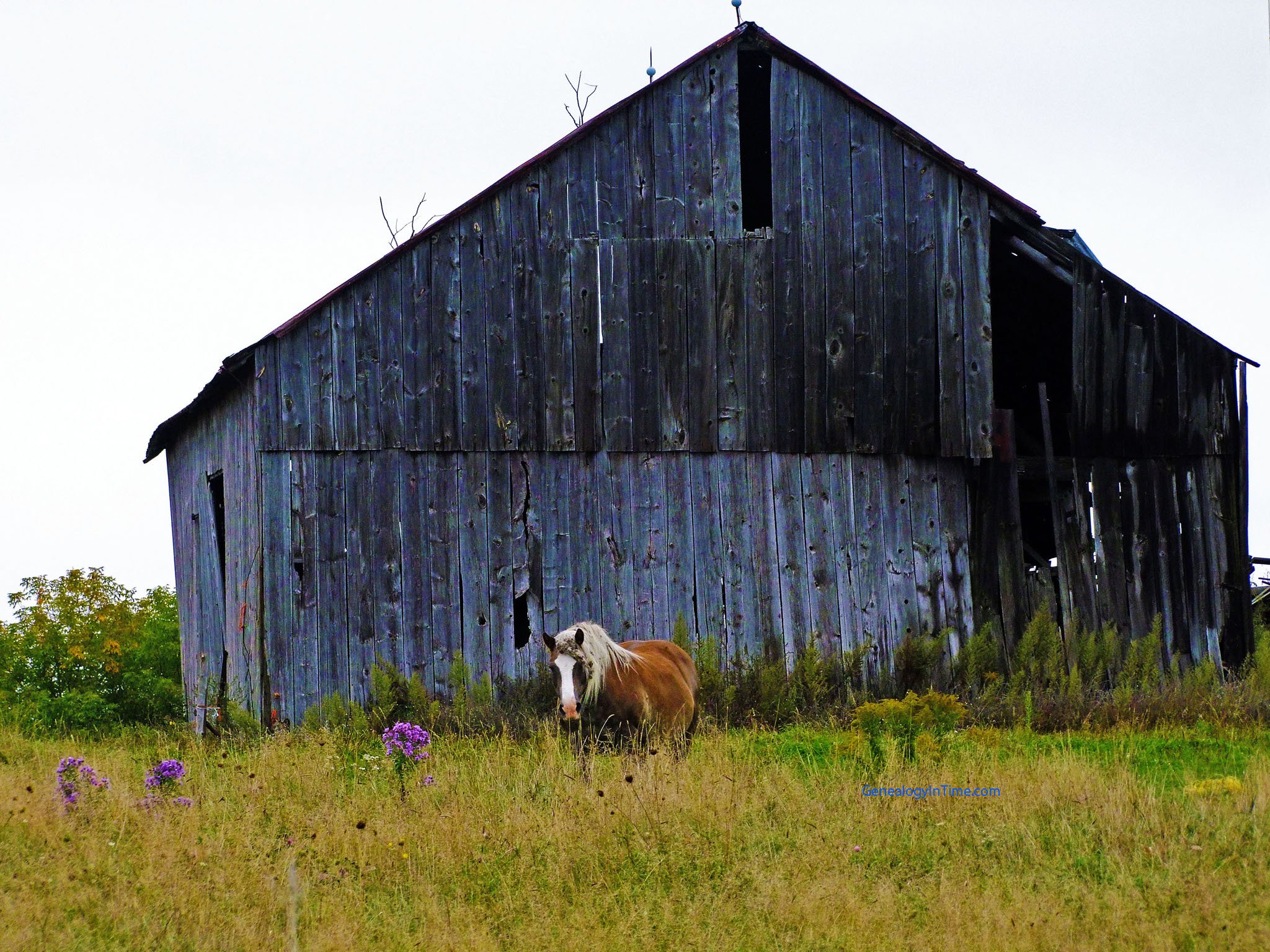 Horse Barn Wallpaper Old Horse Barns 2048x1536