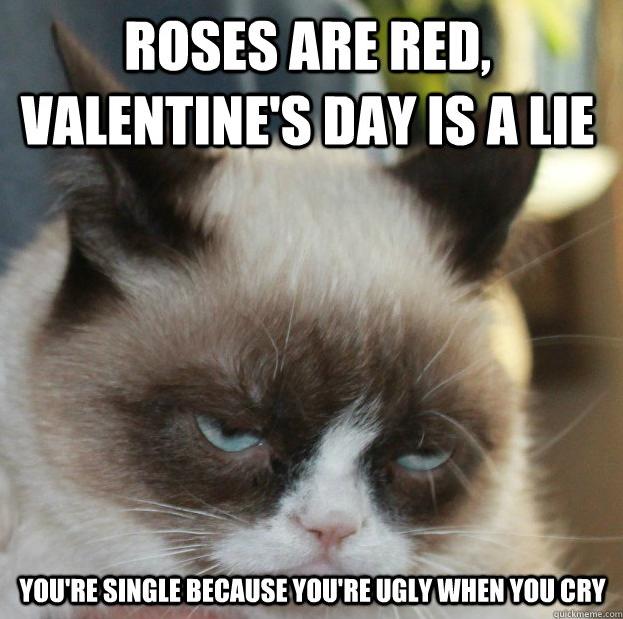 Grumpy Cat Memes Funny 623x619