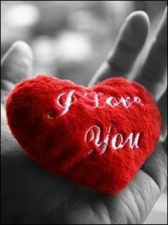 True love wallpapers phone Sopho Nyono 564x752