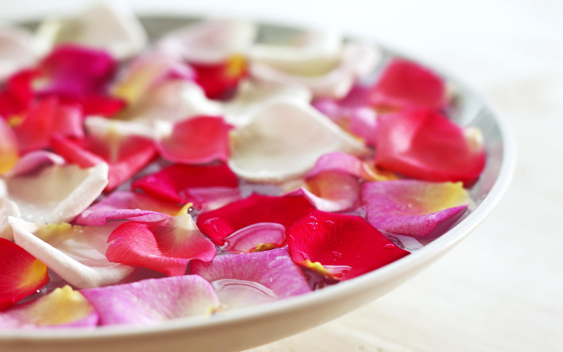 Spa Beauty treatments SPA therapy 1920x1200 Wallpaper 7   Wallcoonet 1920x1200