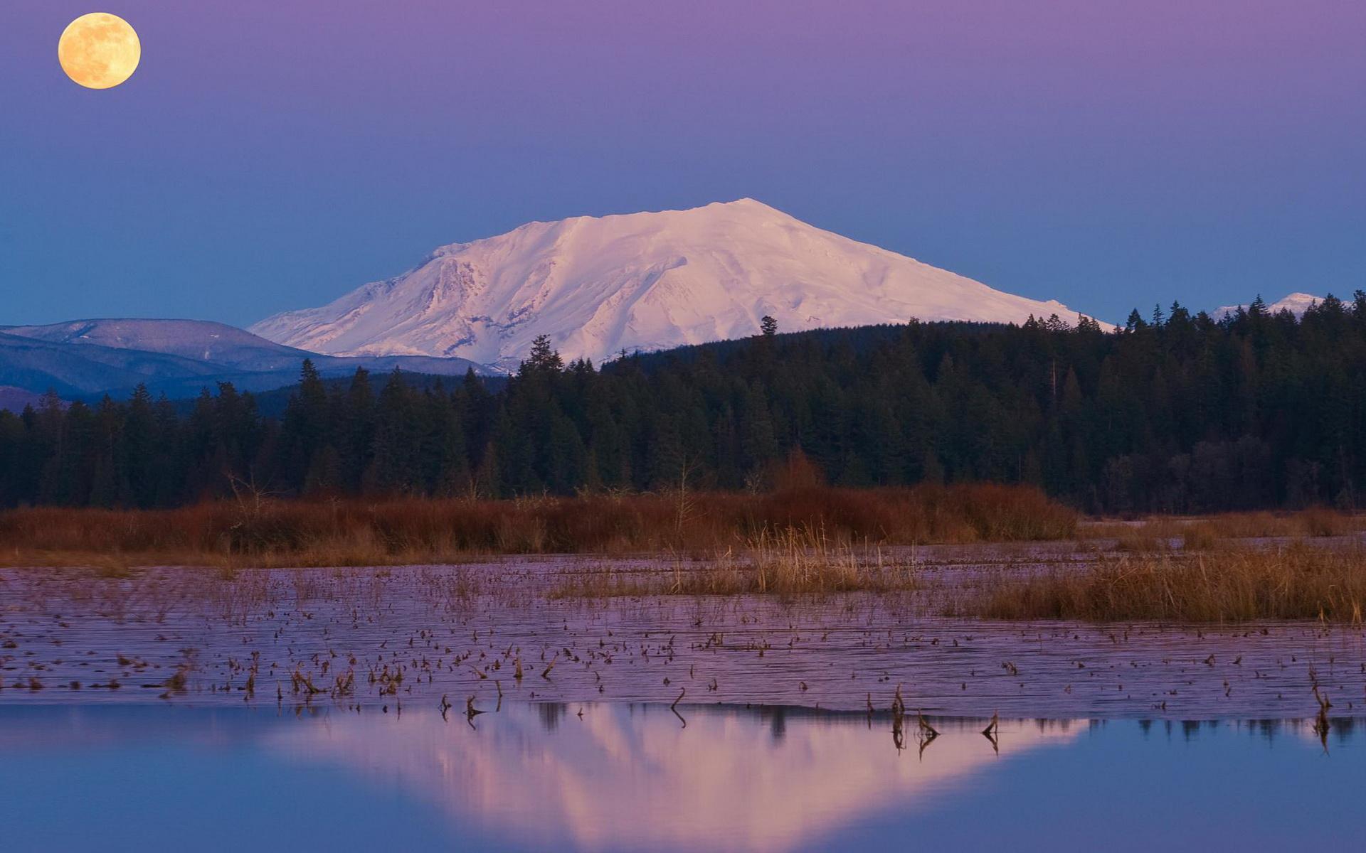 Best 41 Mt Saint Helens Wallpaper on HipWallpaper Google Mt 1920x1200