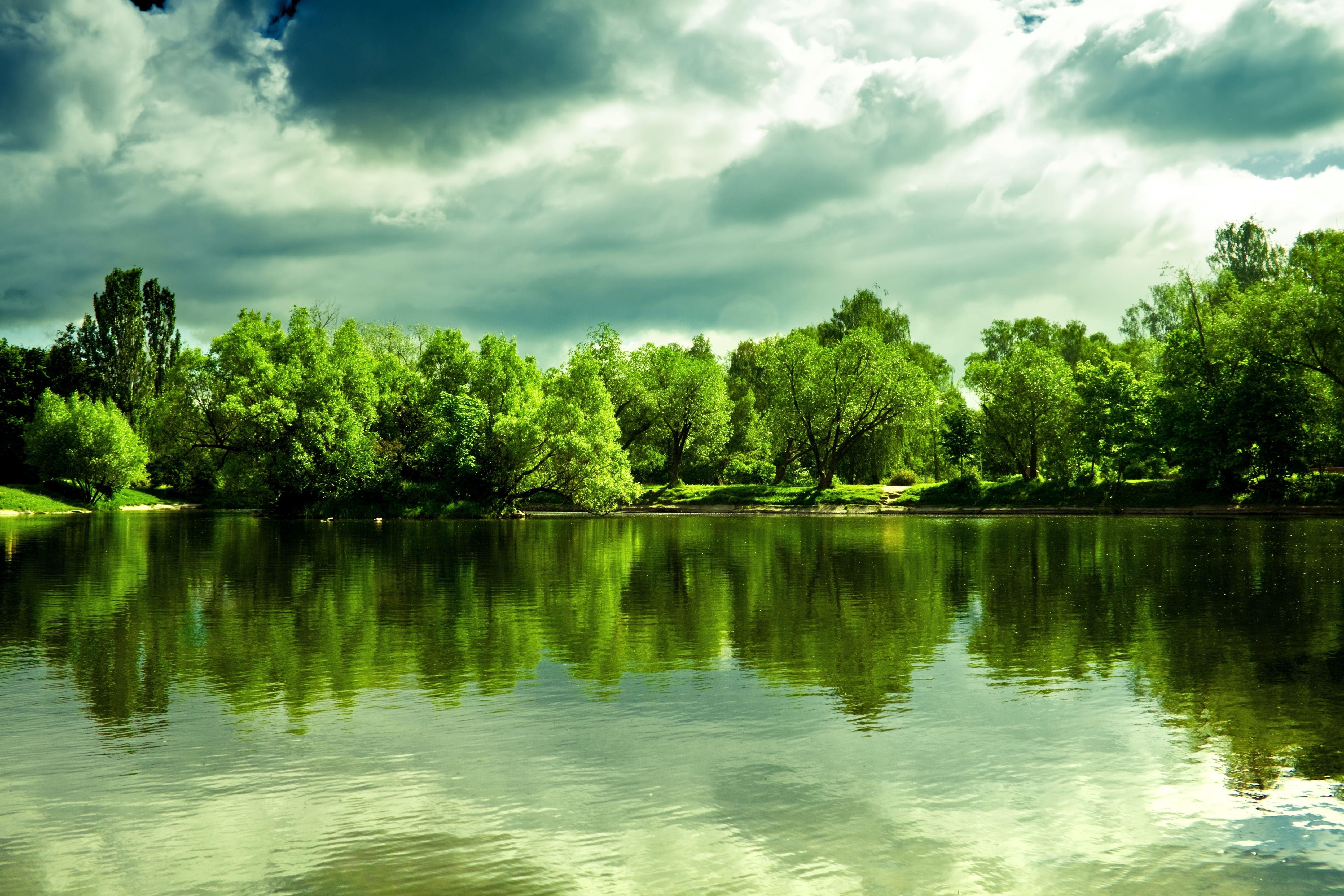 природа деревья небо река дома  № 571503 бесплатно