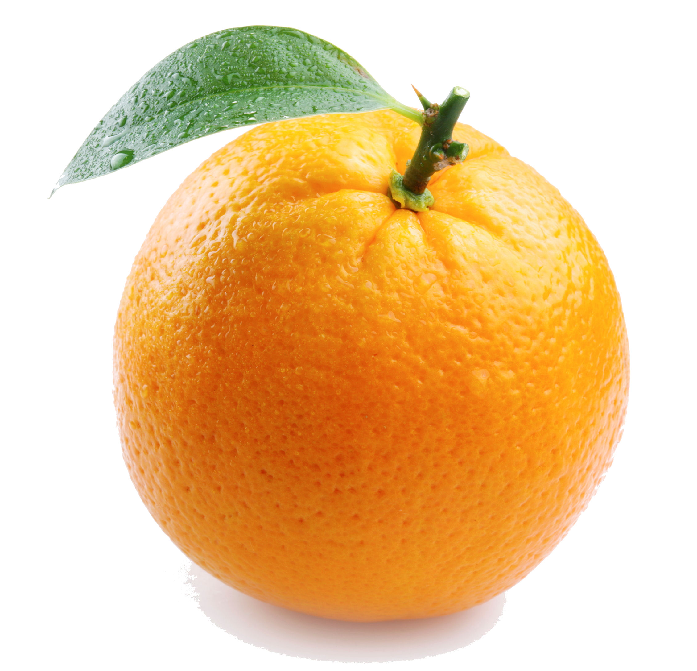 Orange images Orange Fruit HD wallpaper and background photos 2260x2175
