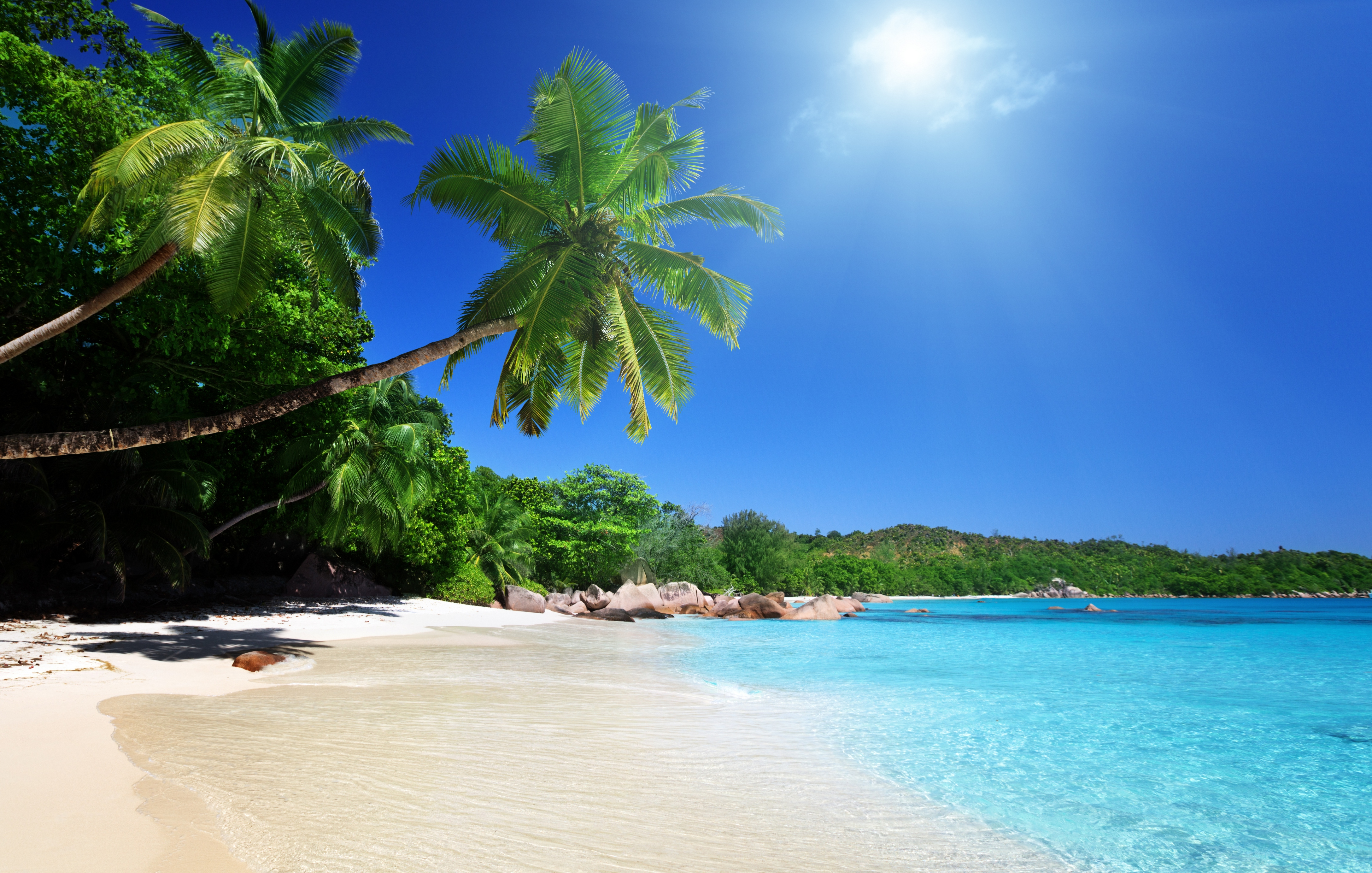 Tropical Beach wallpaper   ForWallpapercom 4350x2767