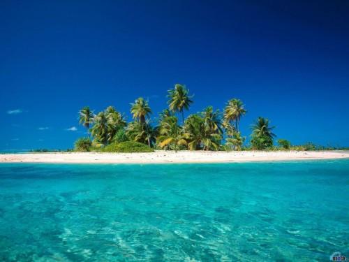 Tropical Island Screensaver Screensavers   Download Tropical 500x375