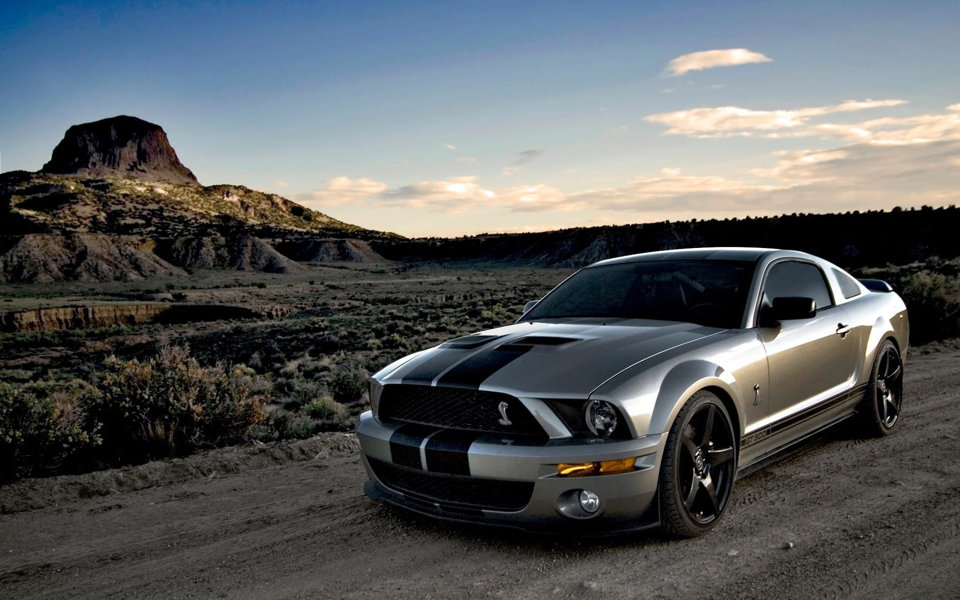 Shelby Gt500 Mustang Desktop Background Screensaver Apps Directories 1920x1200