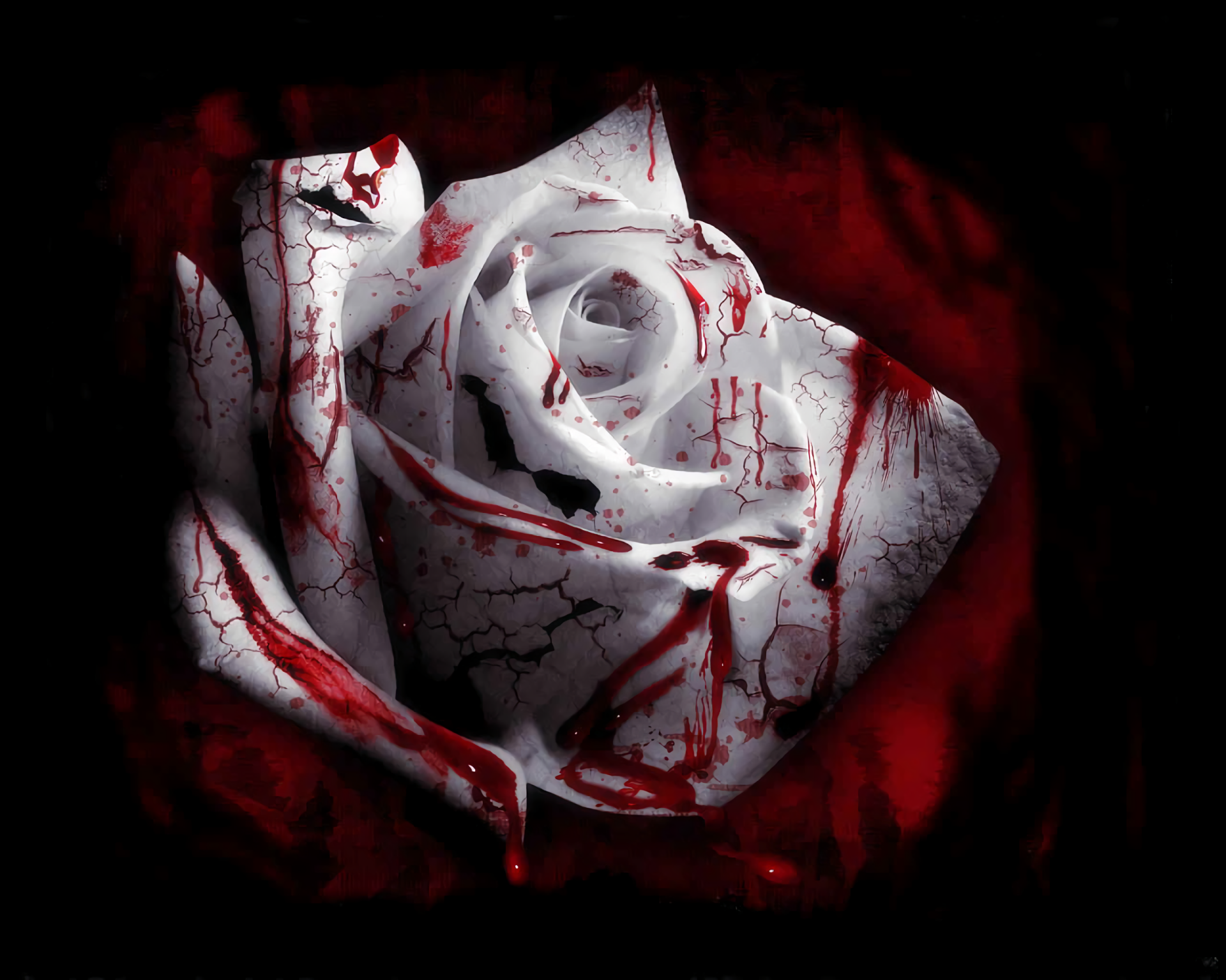 Blood Wallpapers   Top Blood Backgrounds   WallpaperAccess 1920x1536