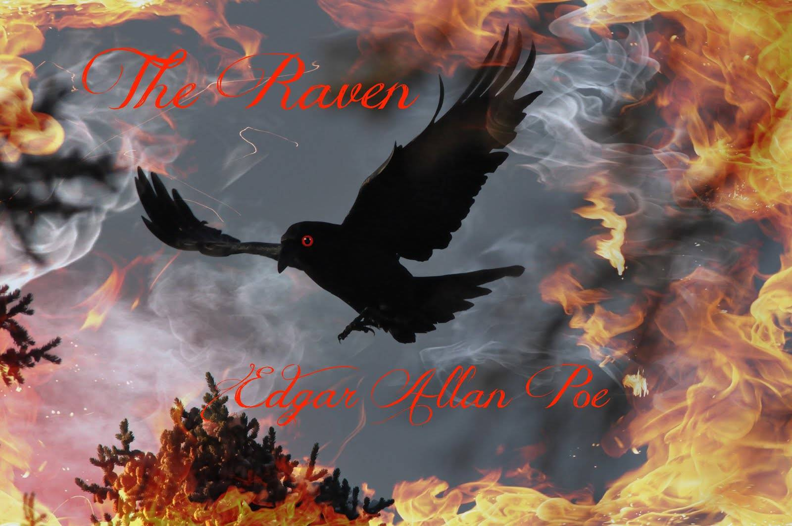 The Raven Wallpaper 6   Edgar Allan Poe Wallpaper 1600x1063