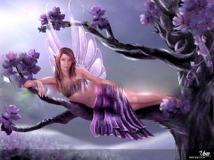Lovely Fairy Angel Wallpaper   Download Screensavers 736x552