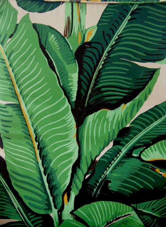 Design Report Martinique Banana leaf Wallpaper designed by Don Loper 665x910