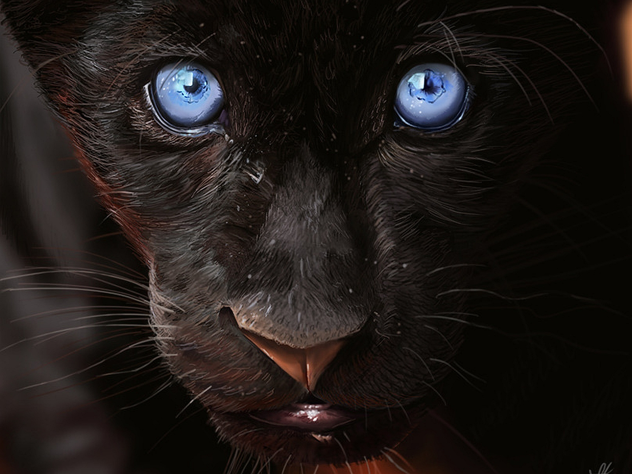 Animal   Black Panther Wallpaper 1280x960