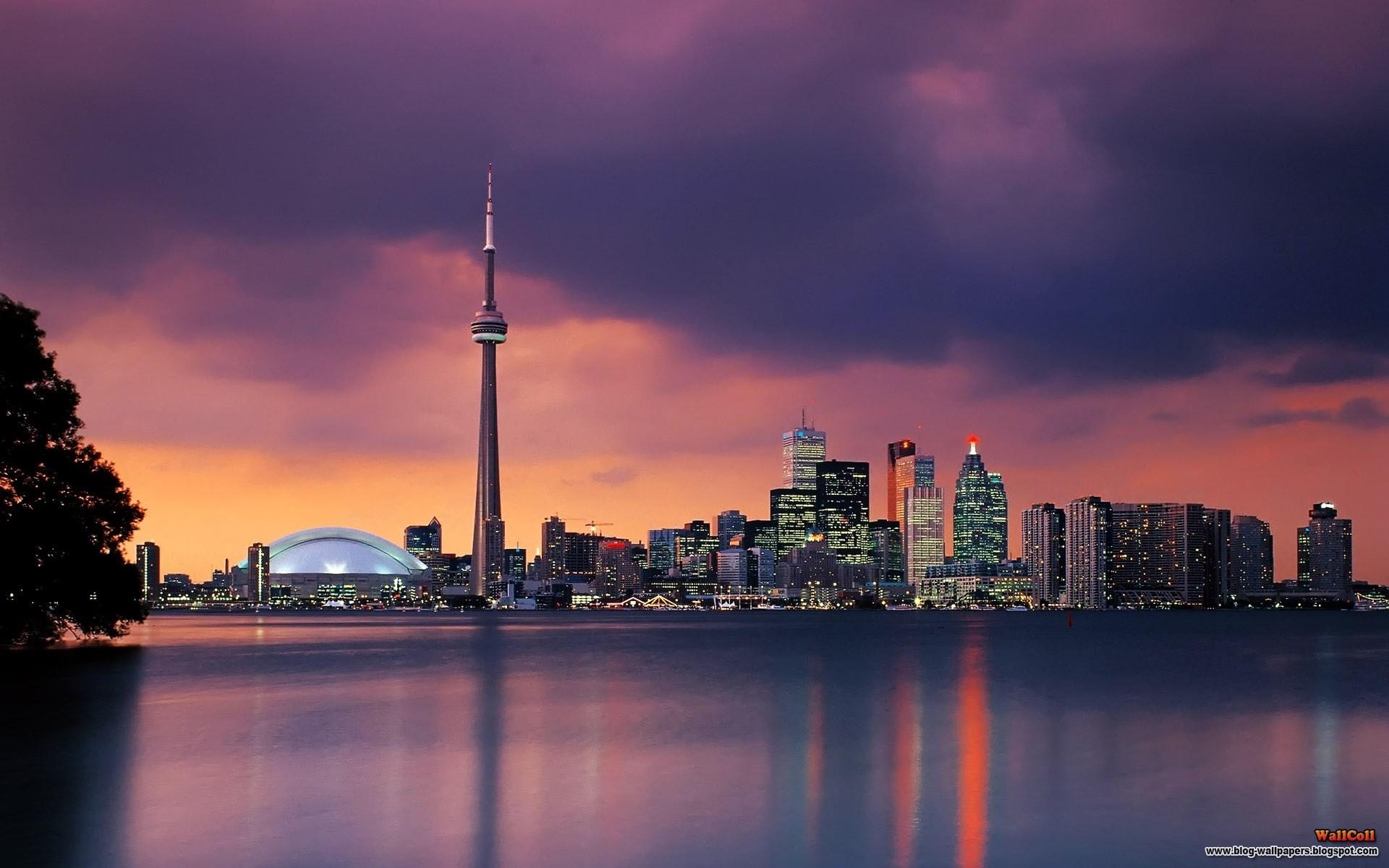 Skylines Night Toronto Cities Night City Fresh New Hd Wallpaper 1920x1200