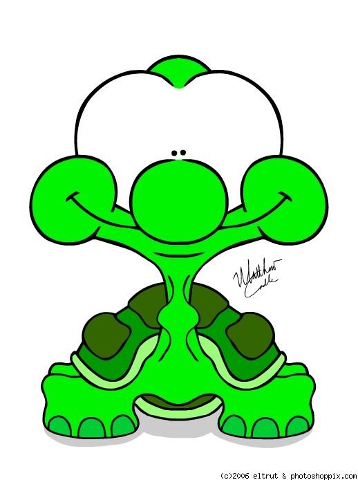 Baby Sea Turtle Cartoon 518x694