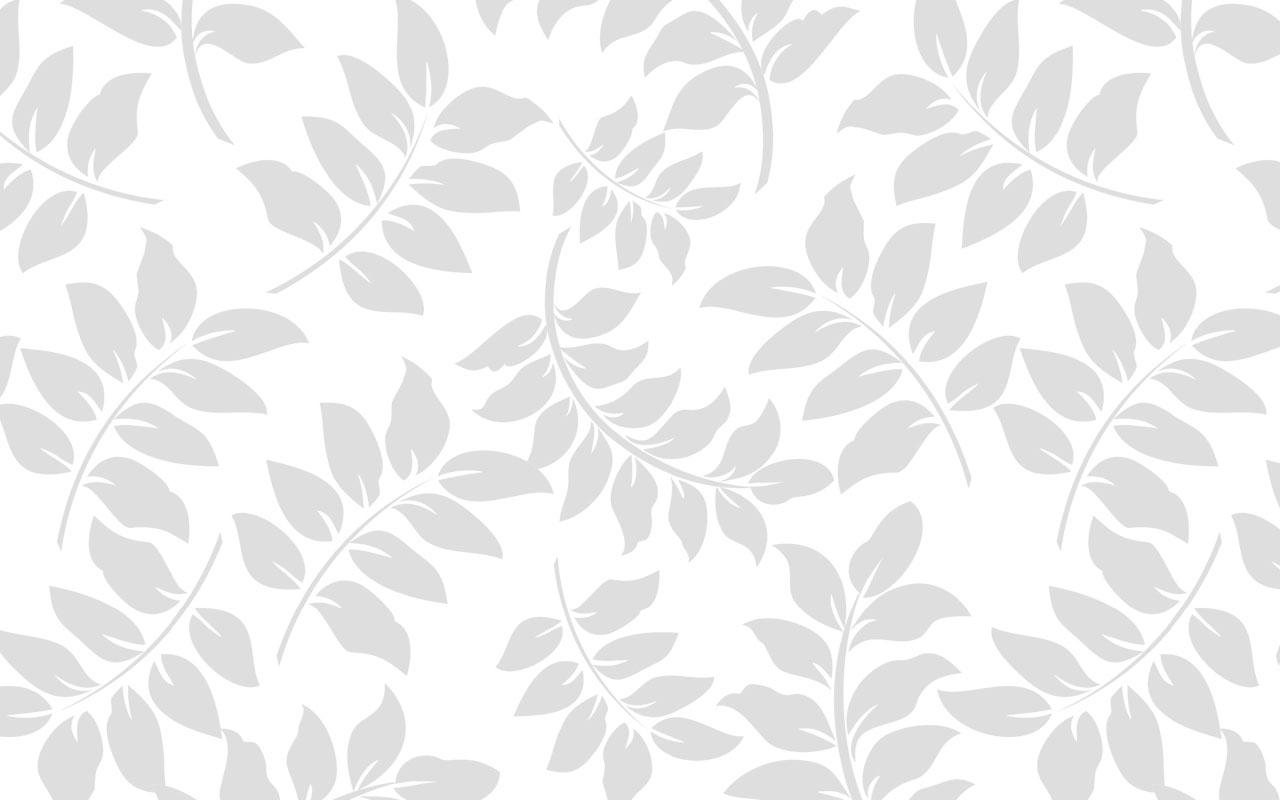 White Background Images 1280x800