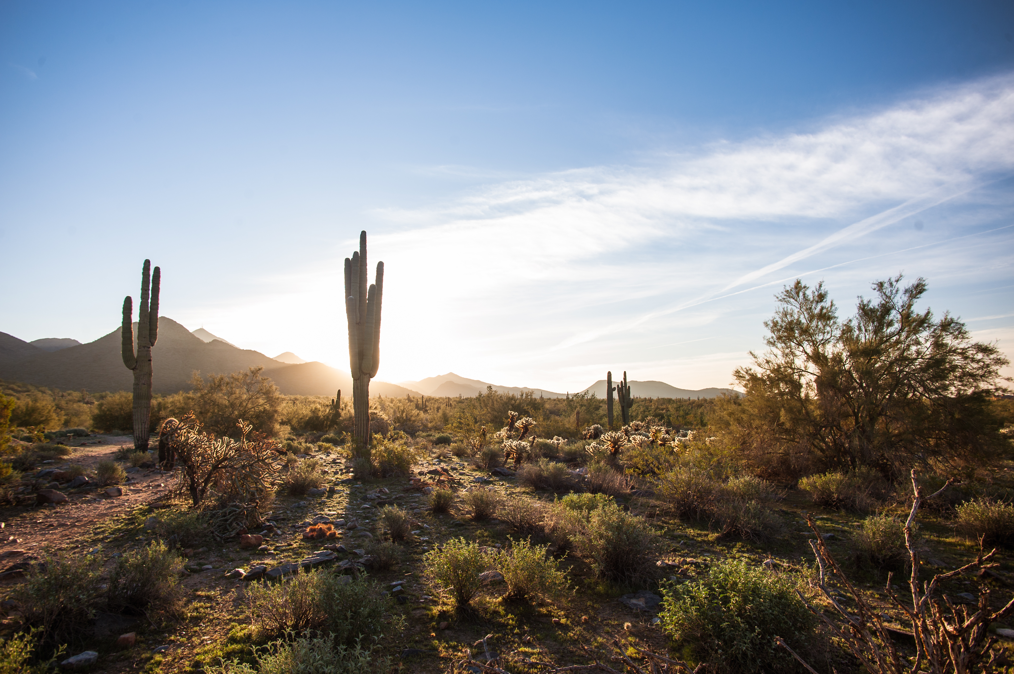 Arizona Wallpapers And Screensavers