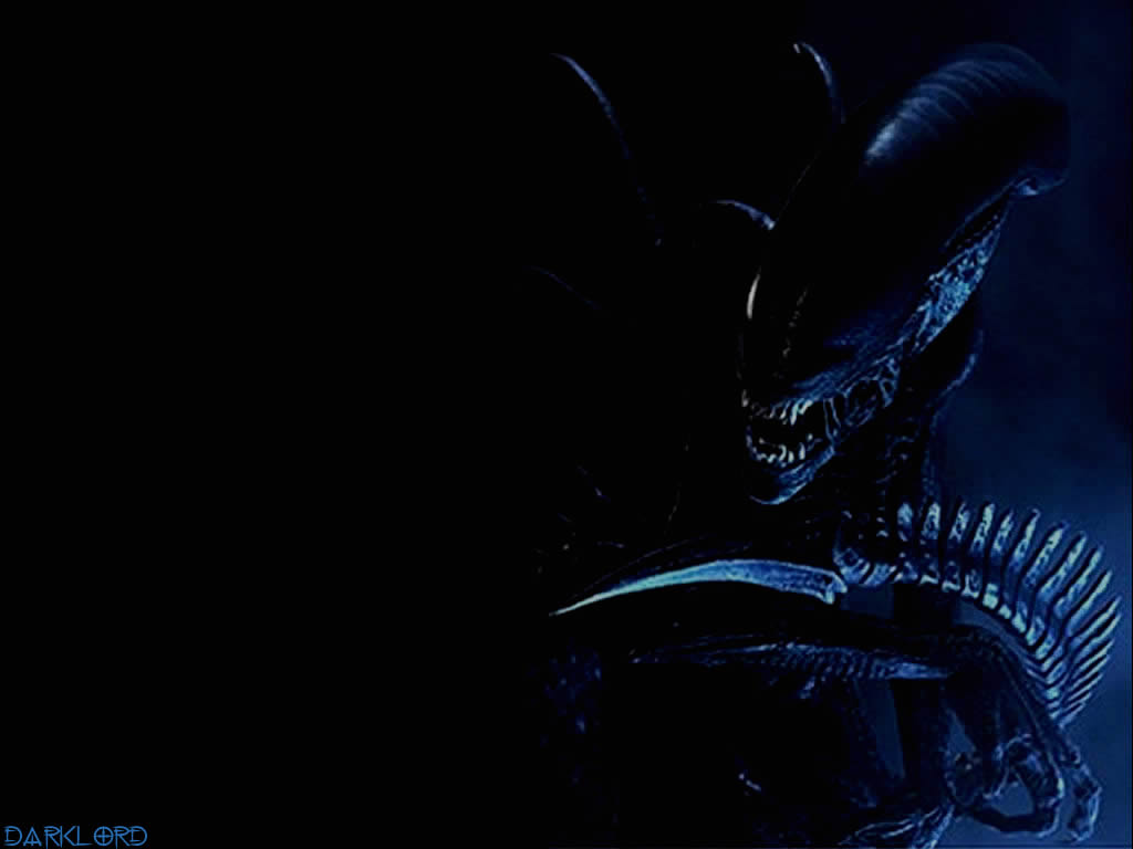 Download Alien Wallpaper 1024x768 Wallpoper 409261 1024x768