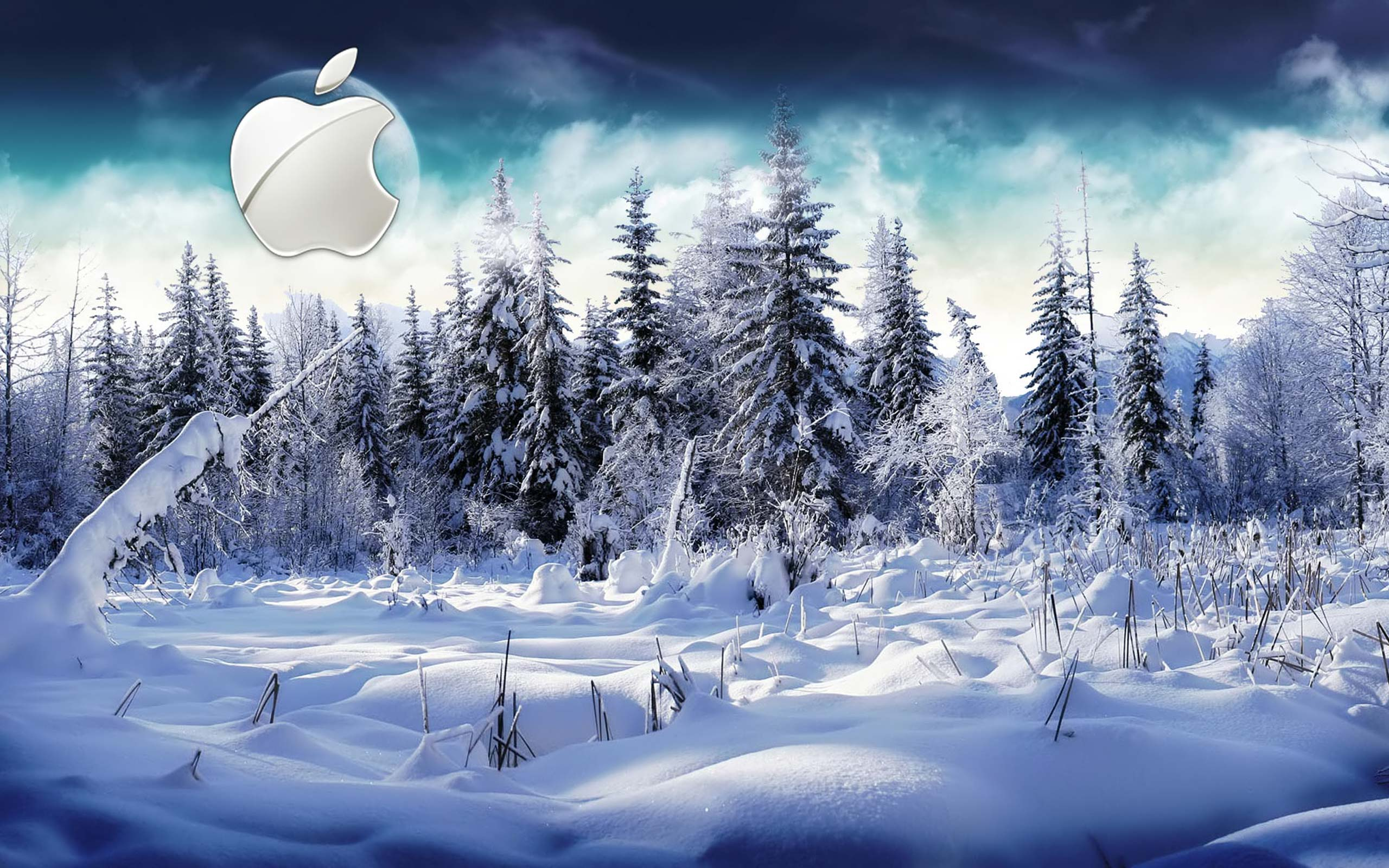 Desktop Wallpaper Gallery Computers Winter Apple Mac 2560x1600