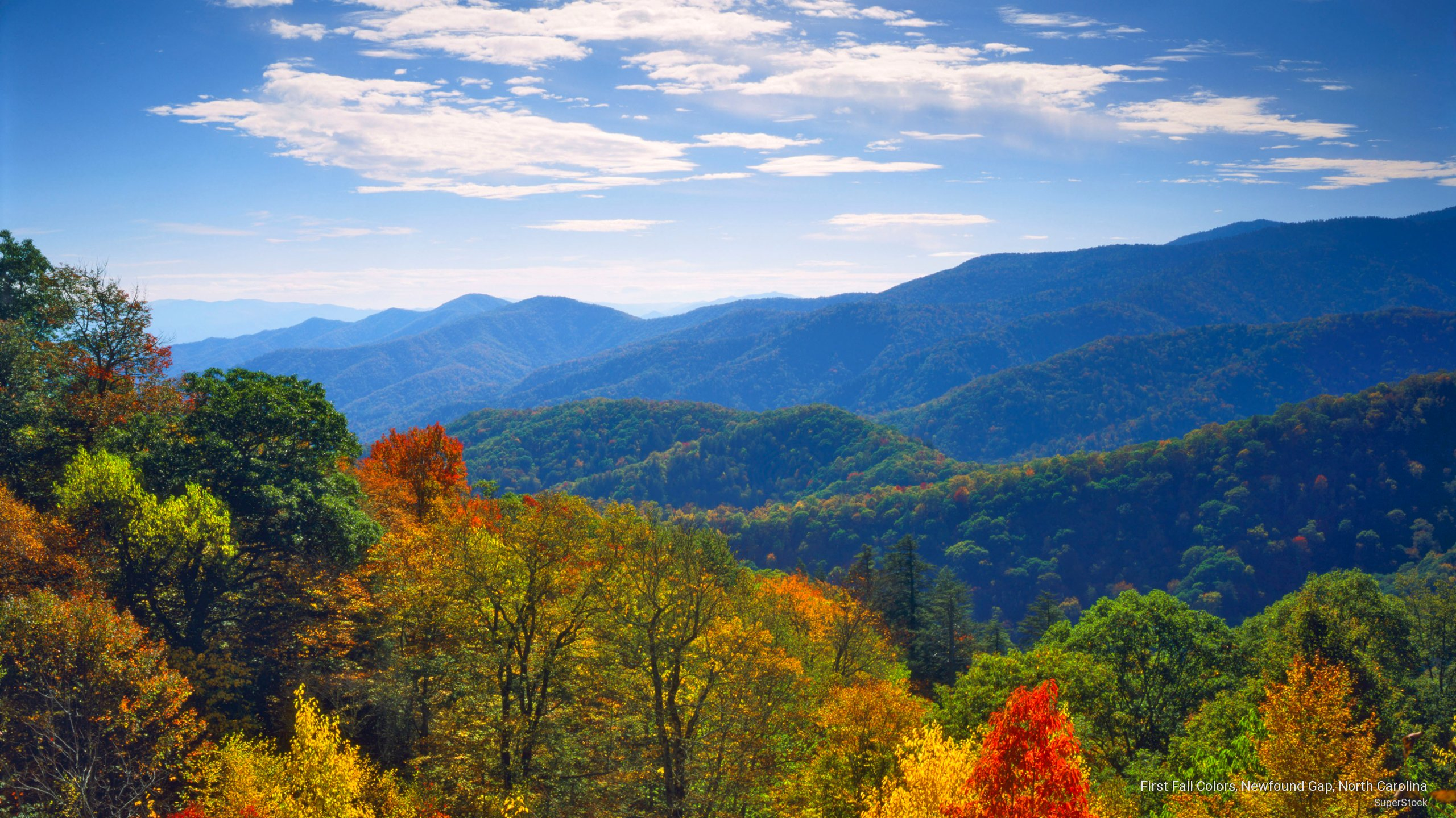 Smoky Mountain Fall Wallpaper Wallpapersafari