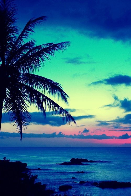 tropical sunset background 500x750