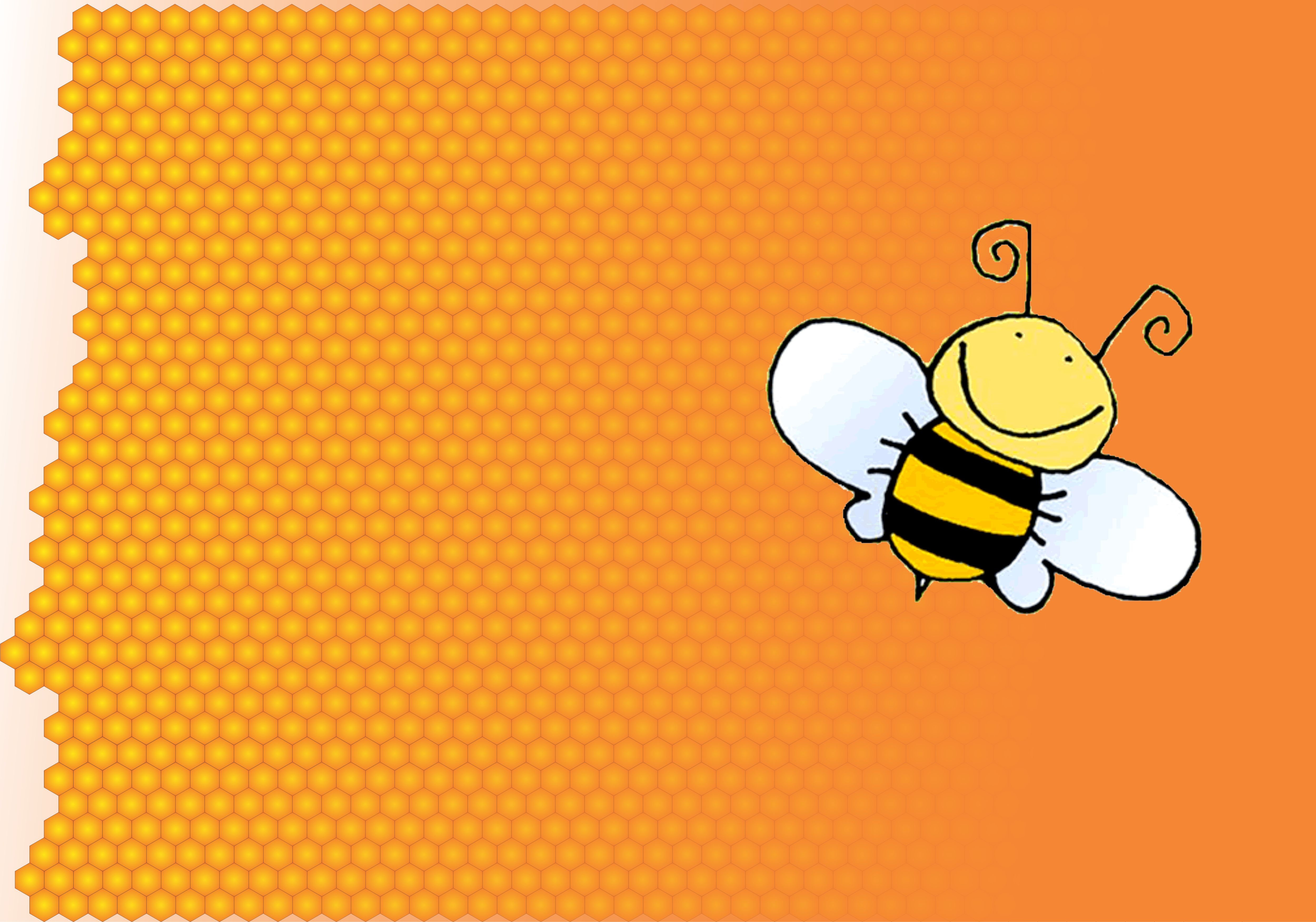 Bee Honey Wallpaper by patomite 4999x3504