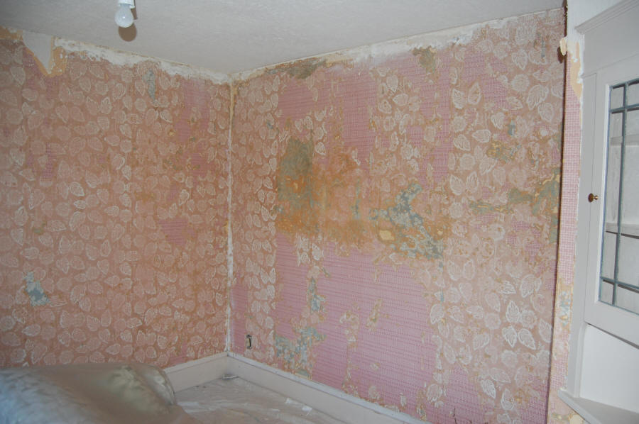 Removing wallpaper in Portland 900x598