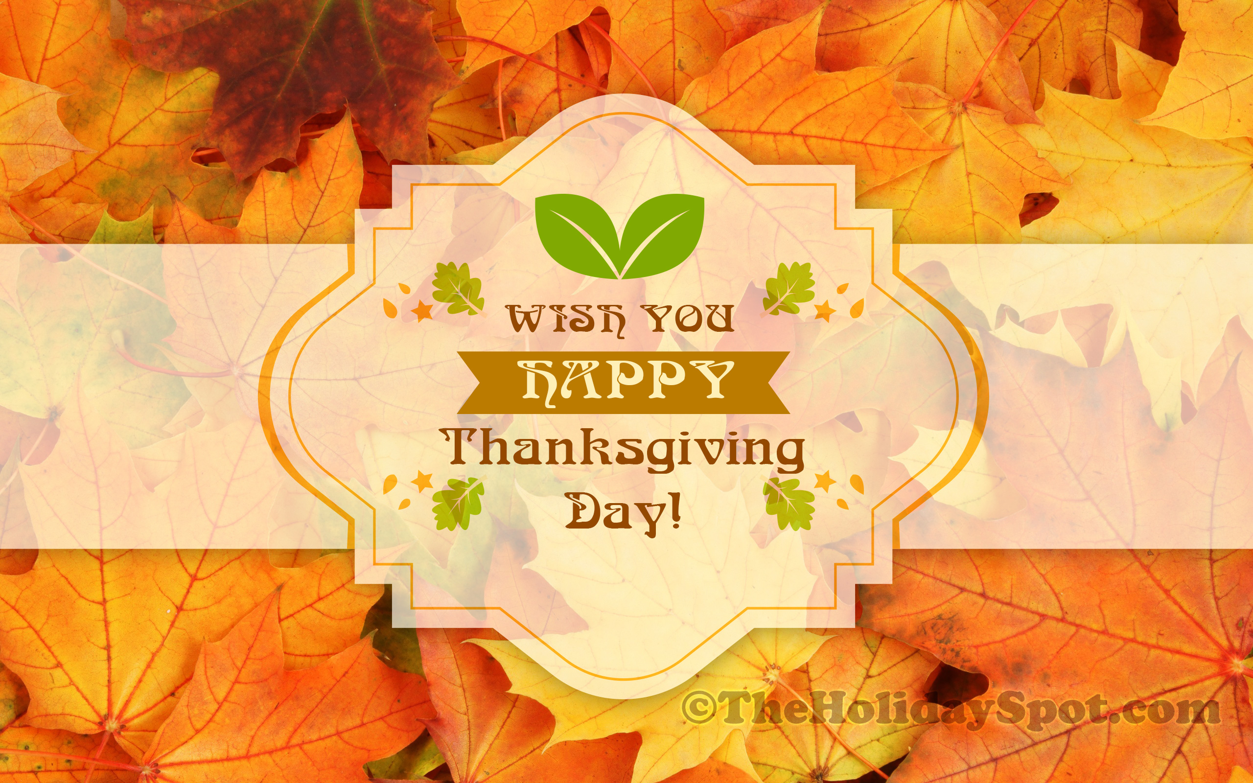 download Thanksgiving Wallpapers HD Happy Thanksgiving 2560x1600