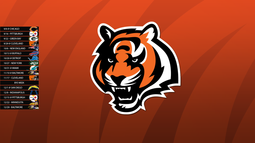 FREE CINCINNATI BENGALS SCREENSAVERS Feb 22 2011 Apparently 1024x576