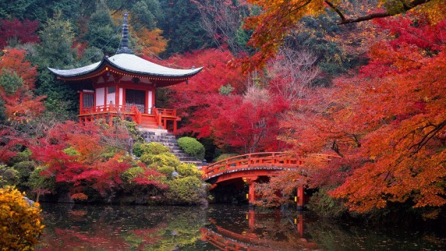Beautiful Autumn Scenery in Japan   Phzzzs Gallery   Gallery 640x360