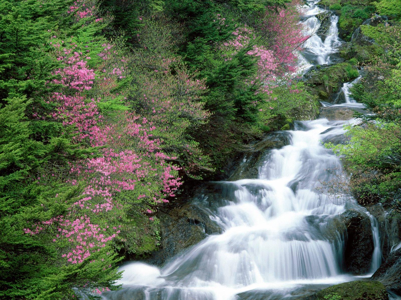 Great waterfall wallpaper Wallpaper Wide HD 1600x1200