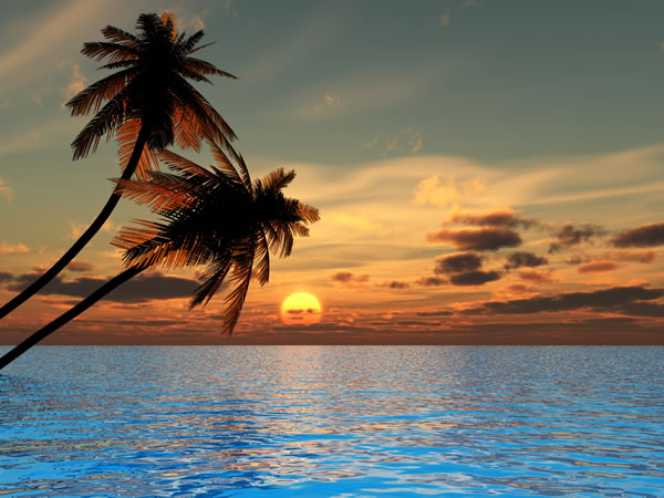 Hawaii Beach Sunset Wallpaper