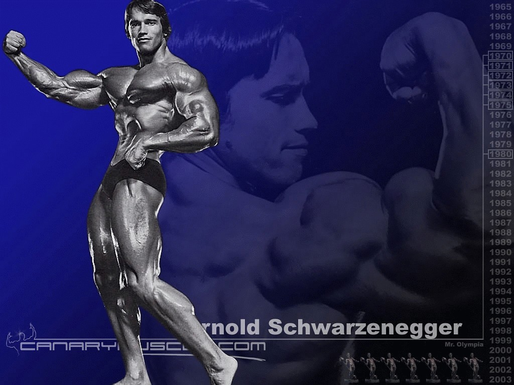 Arnold Schwarzenegger Mr Olympia Bodybuilding Wallpaper Resolution 1024x768
