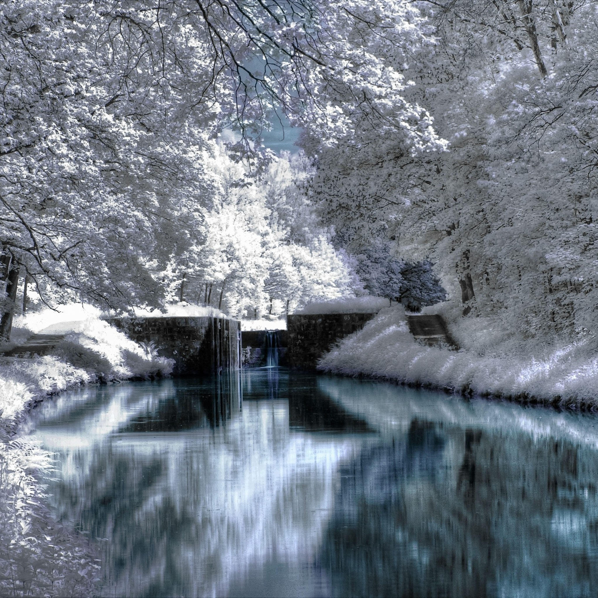 iPad Wallpapers Winter snow scenes ID08   Natural Scenery New iPad 2048x2048