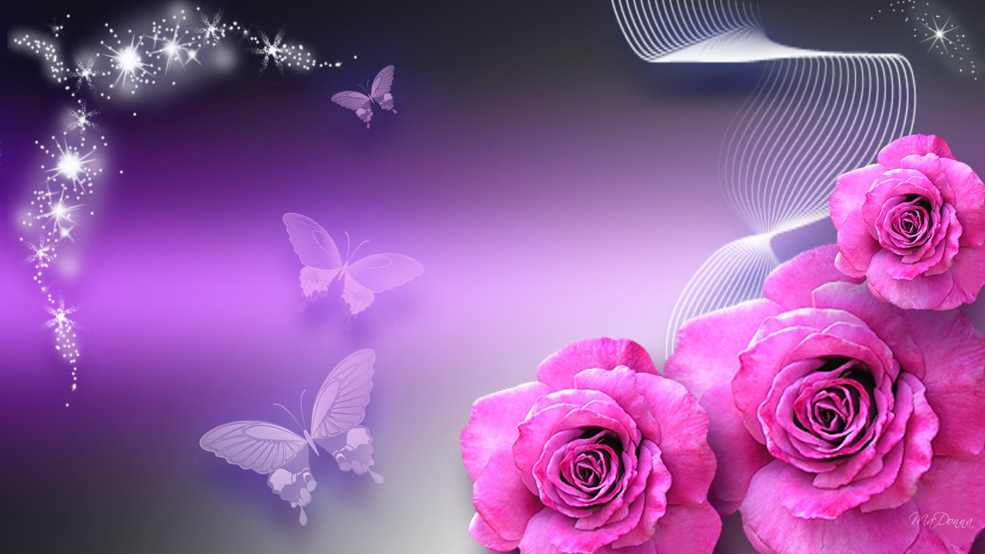 butterfly wallpaper purple pink   HD Desktop Wallpapers 1920x1080