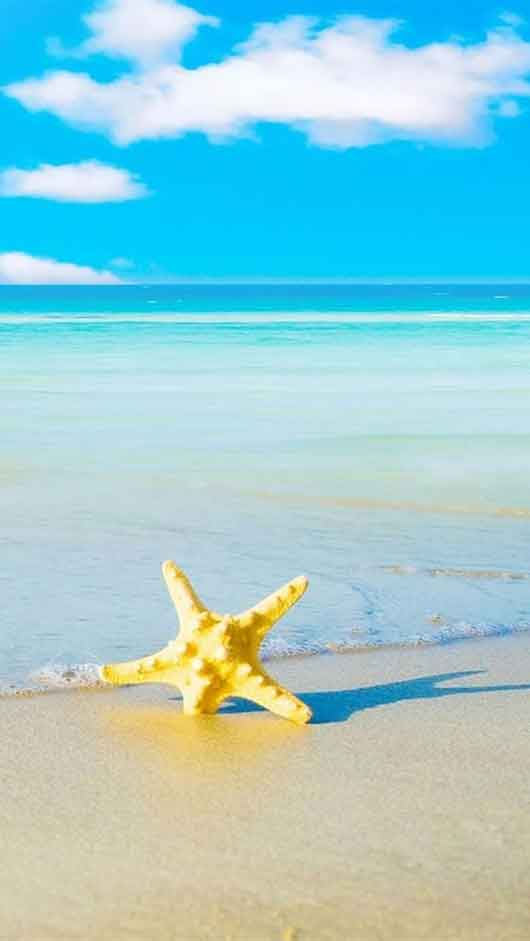 Summer Beach Iphone 5 Wallpapers 530x941