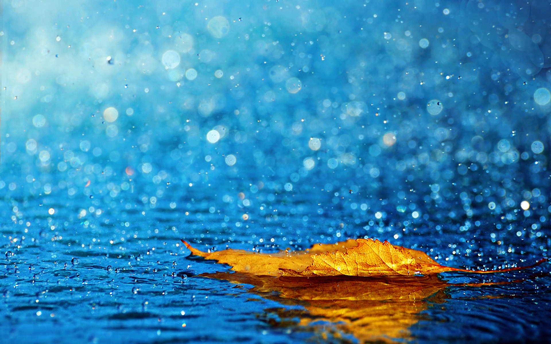 Rain HD Wallpapers For Desktop One HD Wallpaper Pictures Backgrounds 1920x1200