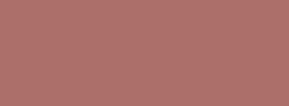 Copper Penny Solid Color Background 950x350
