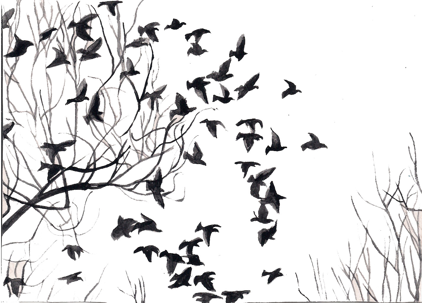 white bird black singles Related searches: bird cages bird cages & houses black bird cages & houses white bird cages & houses red bird cages & houses bird houses bird cages & houses did you find what you were looking for yes no.