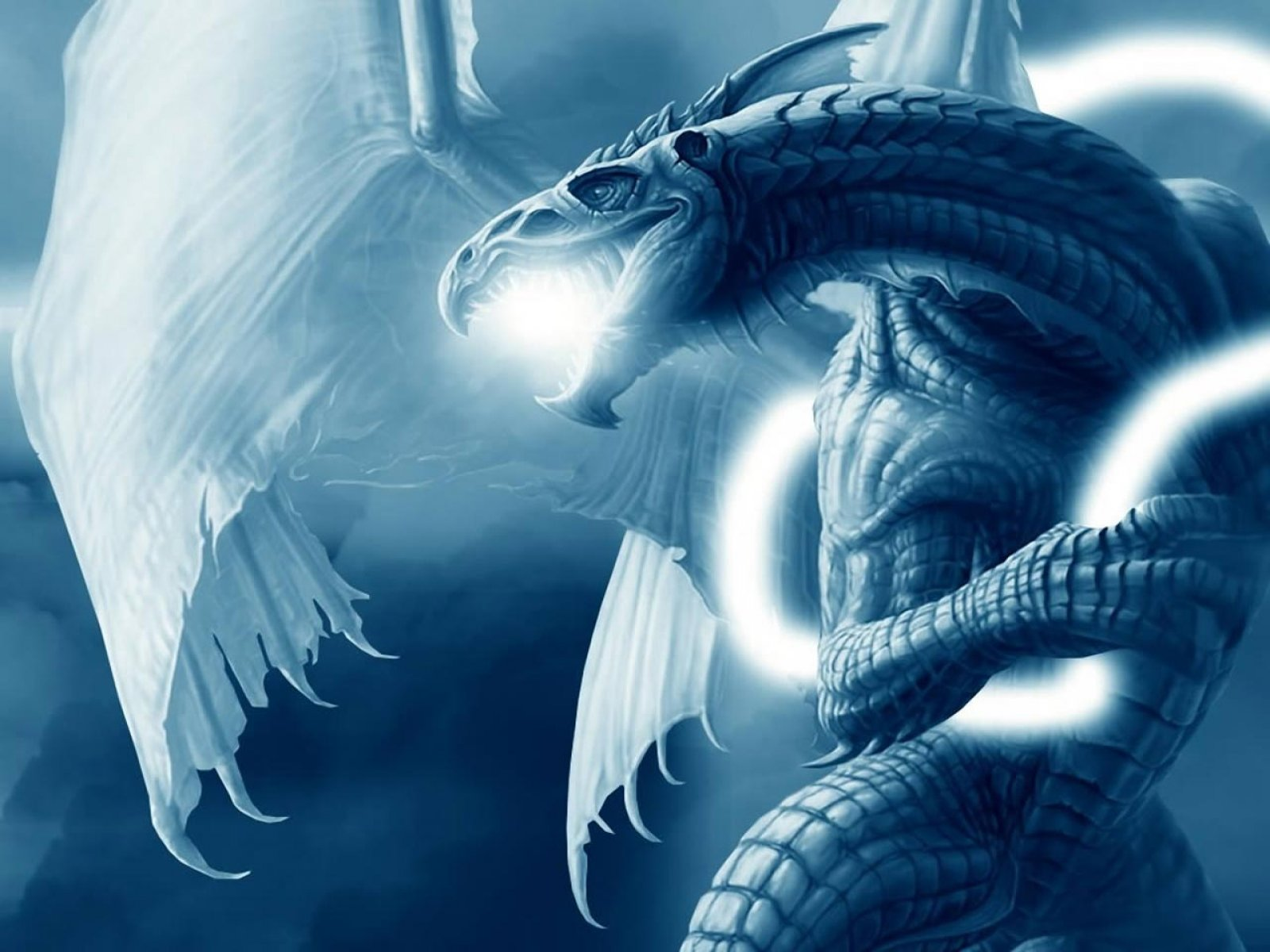1600x1200px free dragon screensavers and wallpaper wallpapersafari
