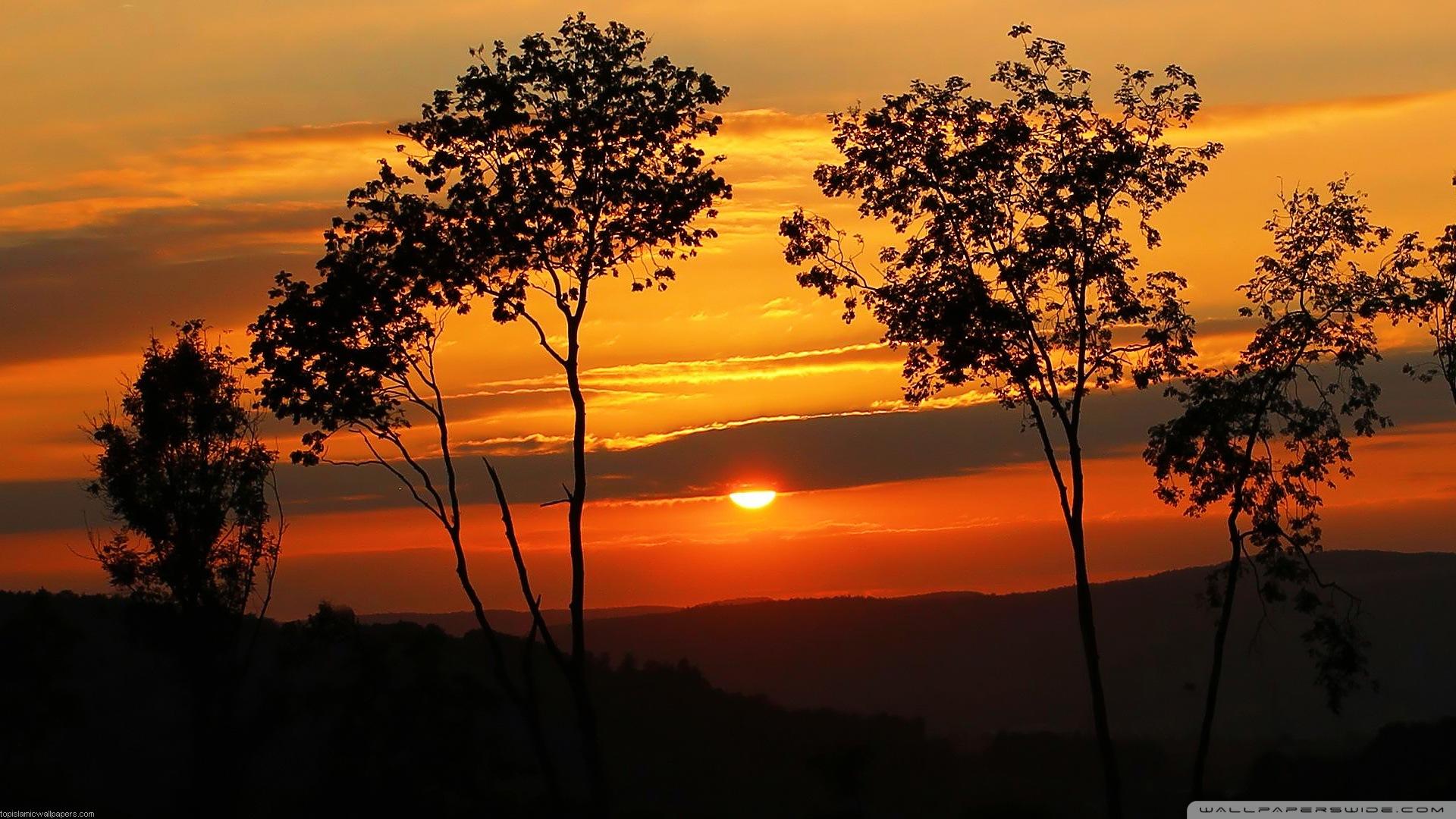 Sunrise HD Wallpaper