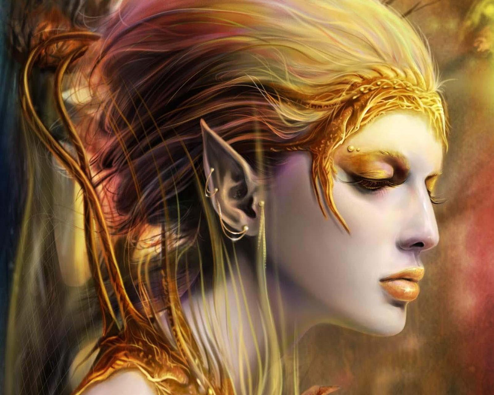 Download wallpaper girl elf elf women wallpaper picture 1600x1280