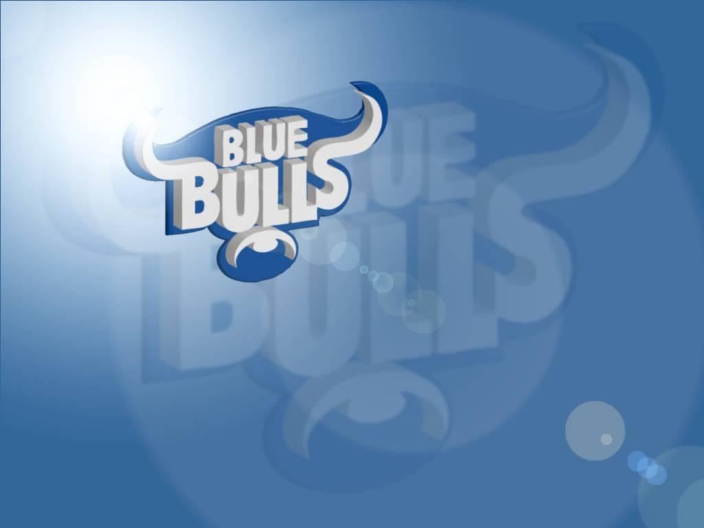 Blue Bulls cambia todo cambia 1024x768