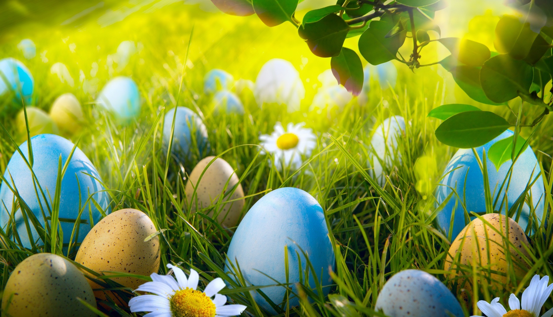 Easter 2018 Backgrounds HD Easter Images 1920x1102