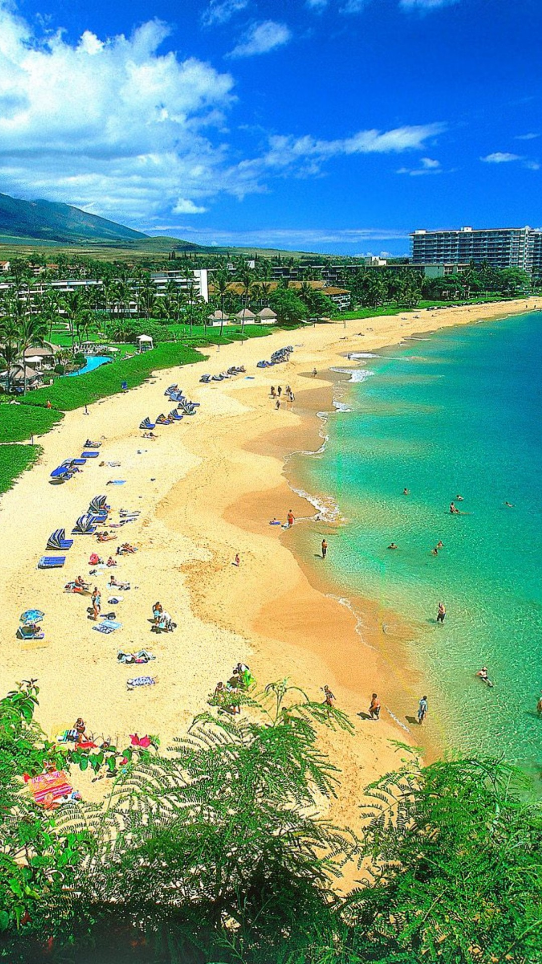 Hawaiian Tiki Wallpaper 35 images 1080x1920