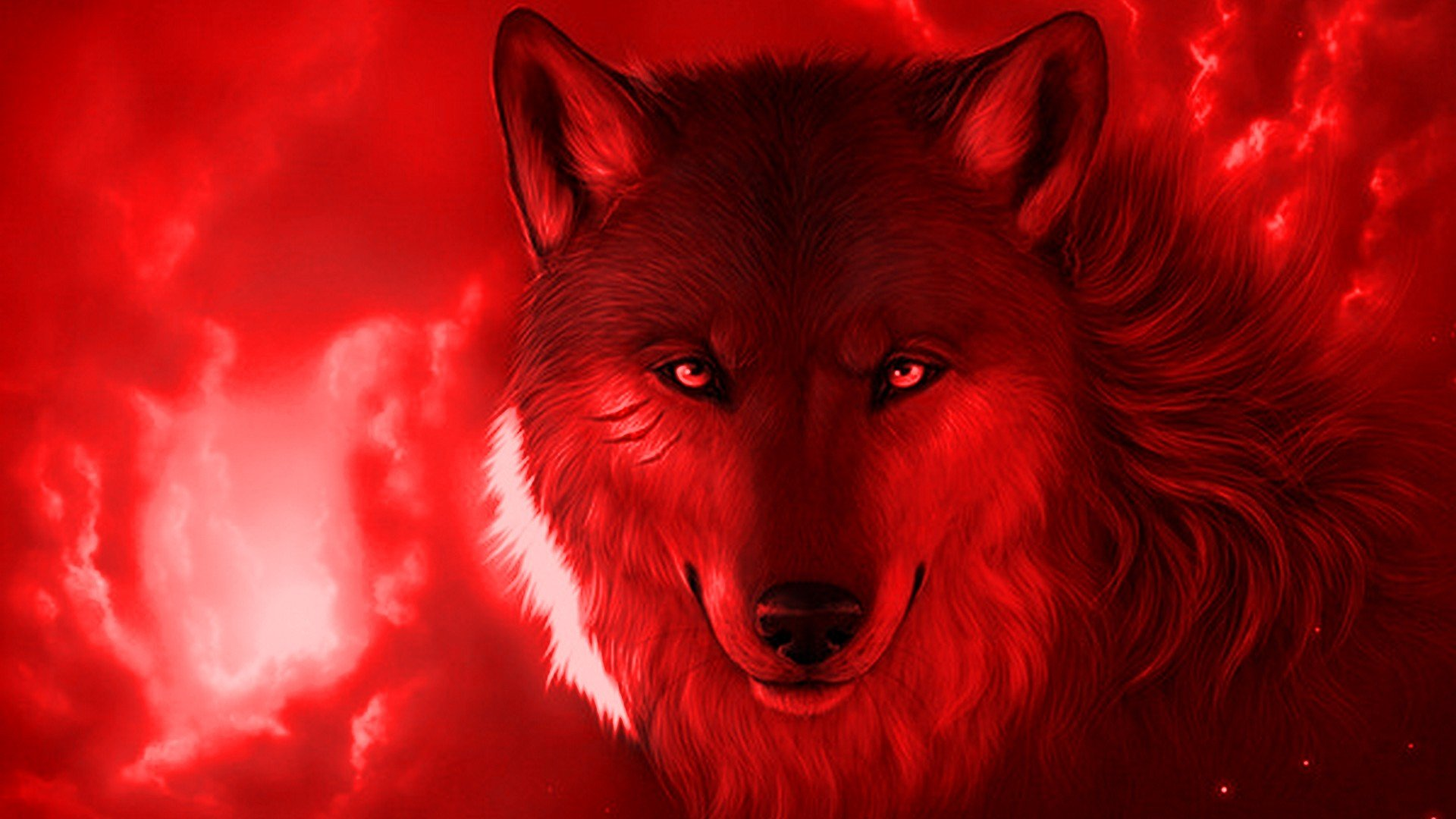Live Wallpaper HD Wallpapers Computer Cool Wolf 1920x1080